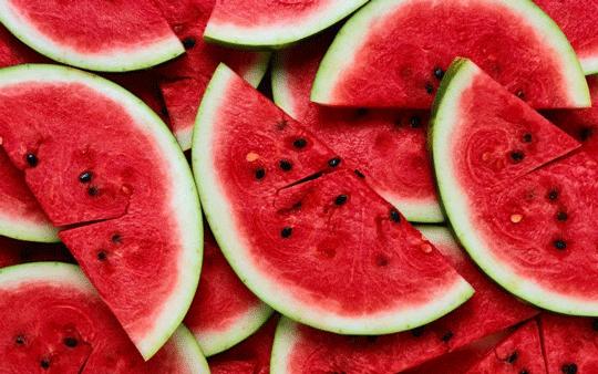 lubenica_2