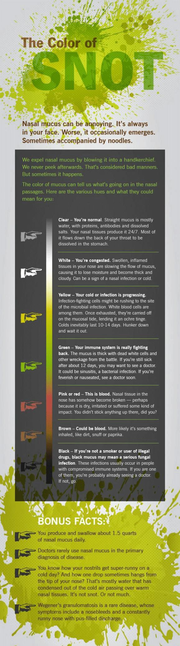 boja-na-sekretot